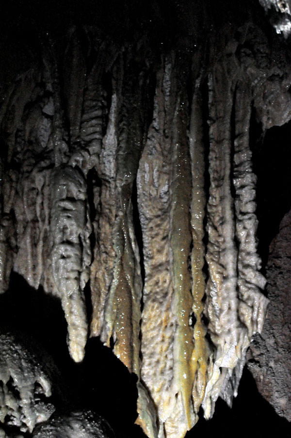 Yarrangobilly Caves